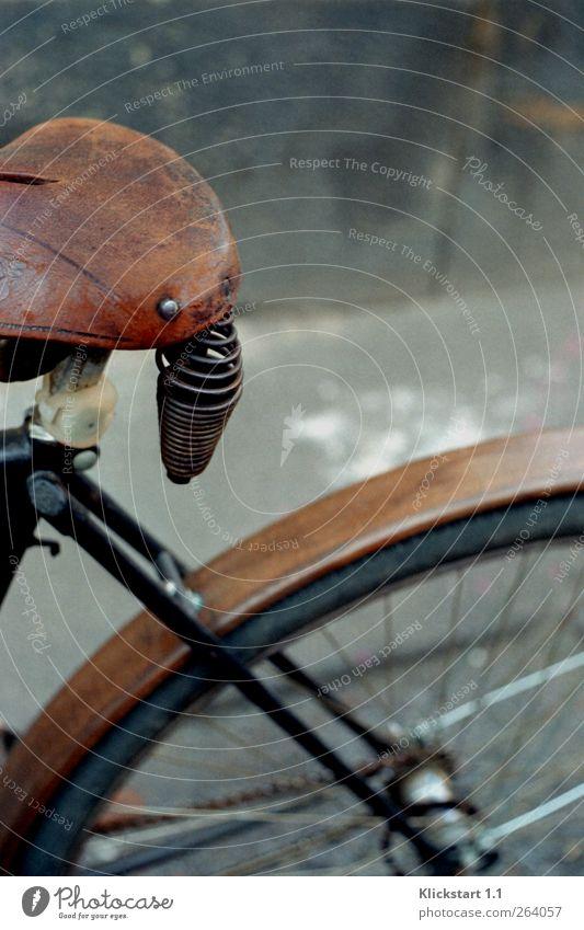 ...die Straßen entlang. Leben ruhig Freizeit & Hobby Fahrradfahren Fahrradsattel Reifen Speichen Umwelt Herbst Stadt Mauer Wand Verkehr Verkehrsmittel Fahrzeug