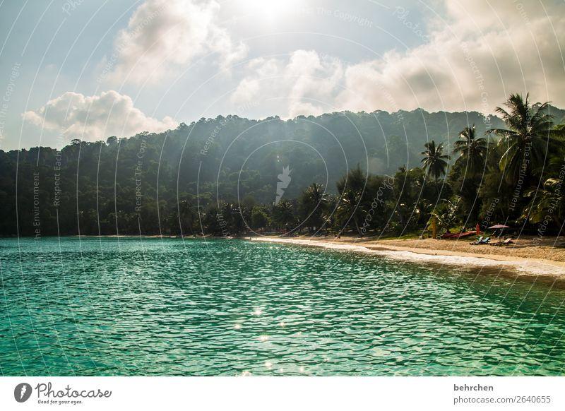 wenn wir träumen Ferien & Urlaub & Reisen Tourismus Ausflug Abenteuer Ferne Freiheit Natur Landschaft Himmel Wolken Palme Wellen Küste Strand Meer Insel
