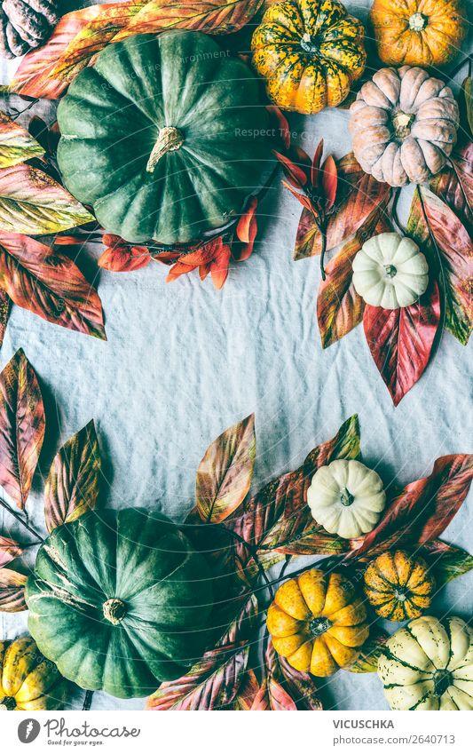 Herbst Stillleben mit Kürbisse und Herbstlaub Gemüse Design Leben Häusliches Leben Garten Dekoration & Verzierung Erntedankfest Halloween Natur trendy