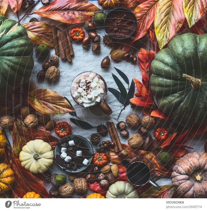 Herbst Stillleben mit Kürbisse und Heiße Schokolade Getränk Heißgetränk Kakao Tasse Leben Häusliches Leben Wohnung Innenarchitektur Dekoration & Verzierung