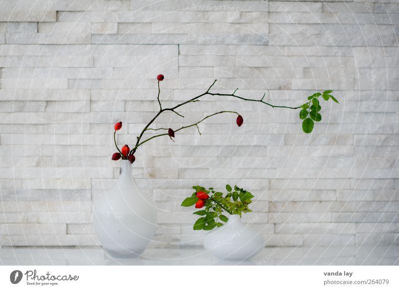 Deko Stil Design Häusliches Leben Wohnung einrichten Dekoration & Verzierung Vase Pflanze Symmetrie Hagebutten Beeren Blatt Marmor Farbfoto Innenaufnahme