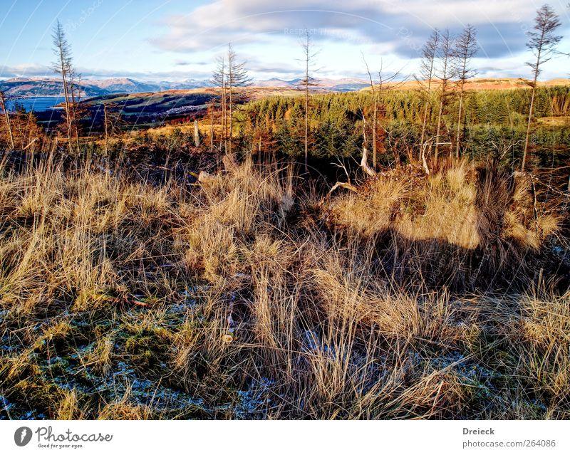 Hügel ohne Herz Natur blau grün Winter Ferne gelb Umwelt Landschaft Schnee Berge u. Gebirge oben Horizont Erde braun gold Klima