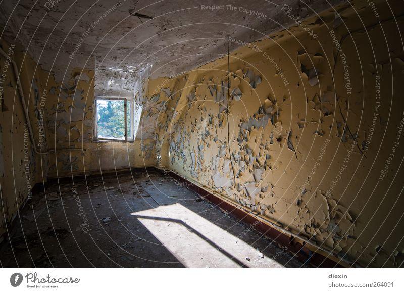 das Licht der vergangenen Tage alt Stadt Farbe Haus Fenster Wand Architektur Mauer Gebäude authentisch kaputt Vergänglichkeit Bauwerk Vergangenheit Verfall