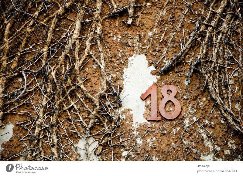 Alles Gute, Nordreisender Natur alt Freude Erwachsene Wand Mauer Feste & Feiern Geburtstag Wandel & Veränderung Ziffern & Zahlen Zeichen trashig mystisch 18 Ranke Glückwünsche