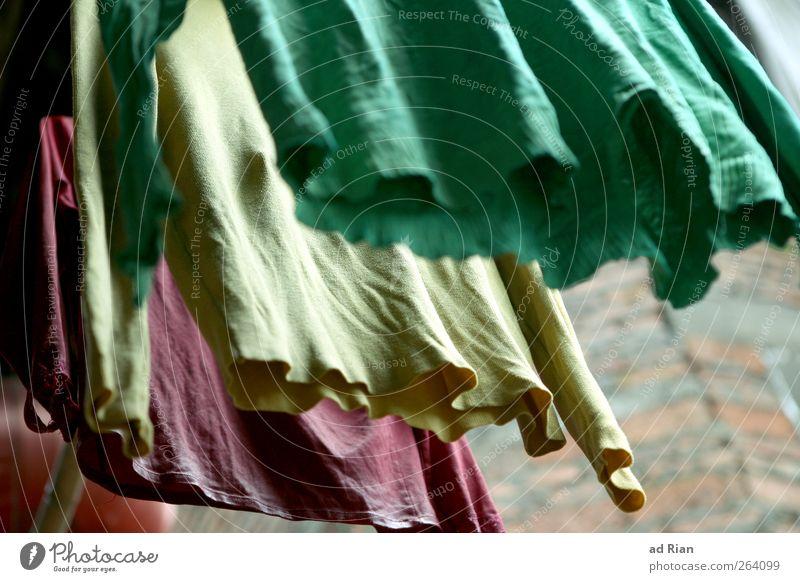 abgehangen kaufen Mauer Wand Mode Bekleidung T-Shirt Pullover einfach frisch trocken mehrfarbig hängen trocknen Wäsche Farbfoto Froschperspektive