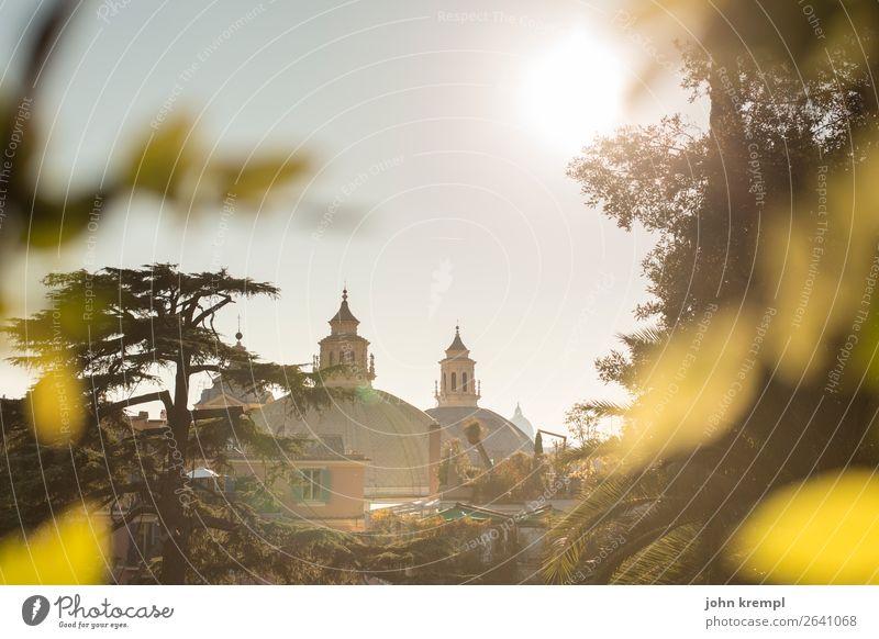 Blattwerk vor Bauwerk Ferien & Urlaub & Reisen Religion & Glaube Kirche Kultur Platz Vergänglichkeit Italien historisch Hoffnung Schutz Dom Rom Basilika