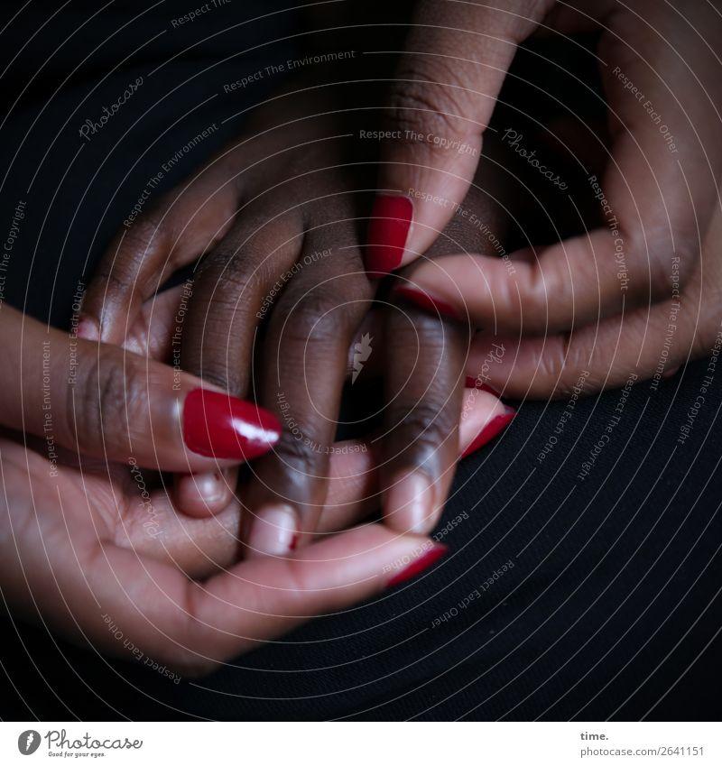fürsorglich Nagellack feminin Hand Finger 2 Mensch berühren festhalten Leidenschaft Vertrauen Sicherheit Schutz Geborgenheit Warmherzigkeit Sympathie