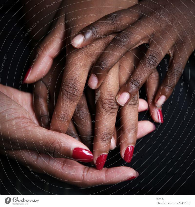 Lebenslinien #116 Haut Nagellack feminin Hand Finger 2 Mensch berühren entdecken festhalten Kommunizieren schön Gefühle Leidenschaft Vertrauen Geborgenheit