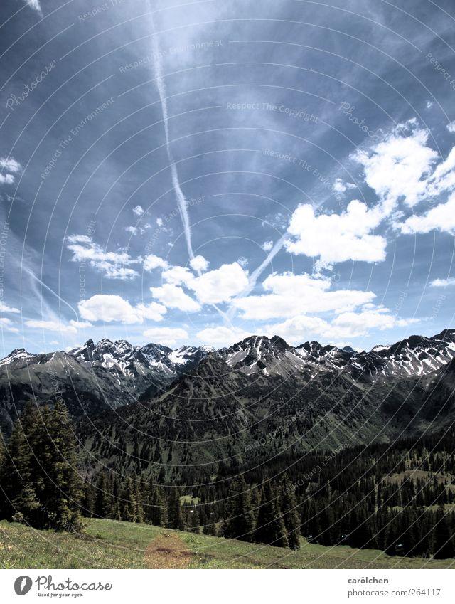 Allgäu Natur schön Umwelt Alpen Schönes Wetter