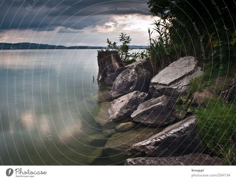 die Ruhe vor dem Sturm II Himmel Natur grün Baum Pflanze Sommer Wolken schwarz Umwelt Landschaft dunkel grau Stein See Regen Wetter