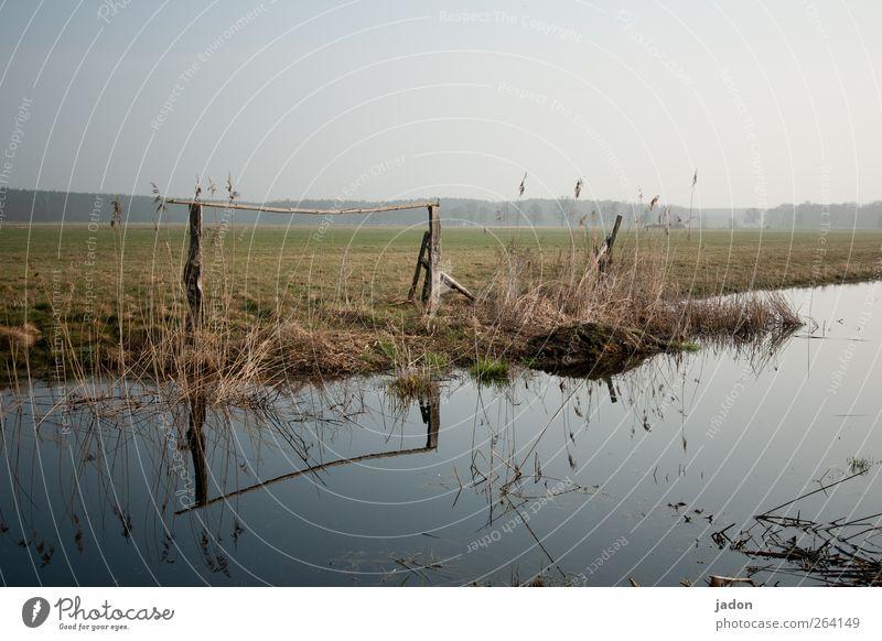 wasserweg. ruhig Schwimmen & Baden Umwelt Natur Landschaft Wasser Wolkenloser Himmel Sträucher Wiese Feld Moor Sumpf Teich Bach Verkehrswege Unendlichkeit nass