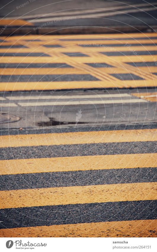 über die Strasse Stadt schwarz gelb Straße Wege & Pfade grau gehen laufen nass Verkehr Verkehrswege Stadtzentrum Ampel Teer Fußgänger Straßenkreuzung