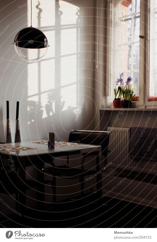 Küche schön Fenster Garten Stil Lampe Innenarchitektur Raum Wohnung Zufriedenheit natürlich modern Tisch ästhetisch Häusliches Leben Dekoration & Verzierung