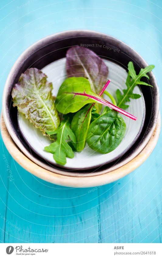 Gemischter Babyblattsalat Gemüse Ernährung Vegetarische Ernährung Diät Schalen & Schüsseln Sommer Blatt Holz frisch grün rot türkis Salatbeilage sprießen Rucola