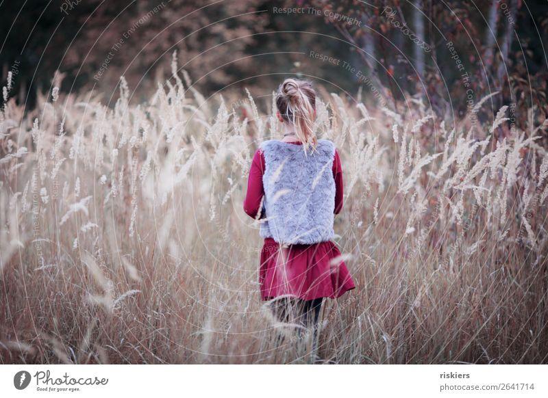 Herbstliebe Mensch feminin Kind Mädchen Kindheit 1 8-13 Jahre Umwelt Natur Landschaft Pflanze beobachten träumen wandern warten blond frei natürlich niedlich