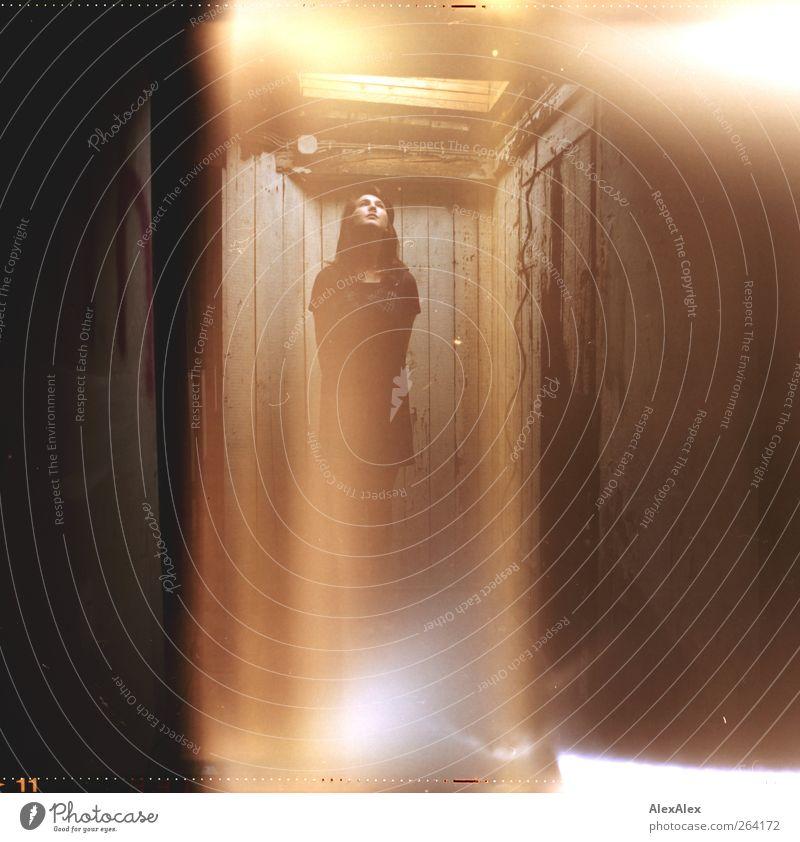 Sie kommen! Dachboden Kabel Junge Frau Jugendliche 1 Mensch Holz Strahlen stehen außergewöhnlich bedrohlich gruselig schön Erotik verrückt braun gold