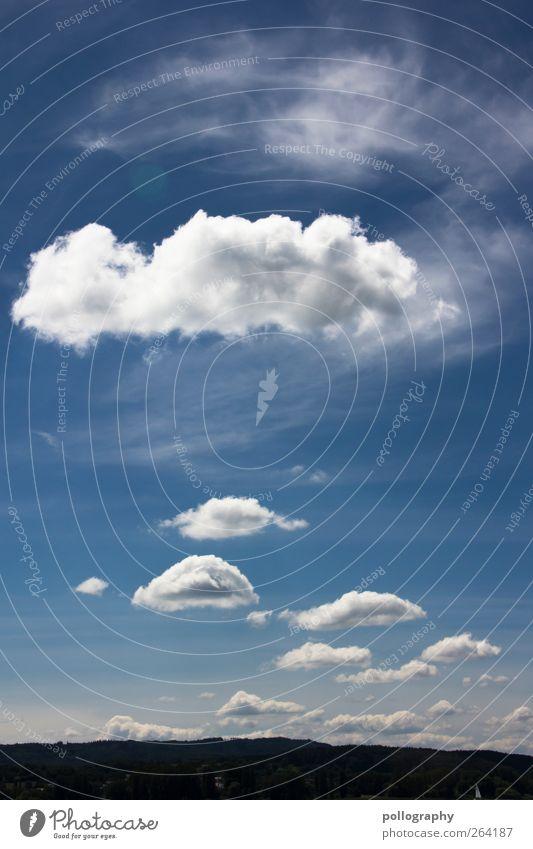 schäfchenwolken Himmel Natur blau weiß grün Ferien & Urlaub & Reisen Pflanze Sommer Wolken Wald Umwelt Landschaft Berge u. Gebirge Freiheit Bewegung Glück