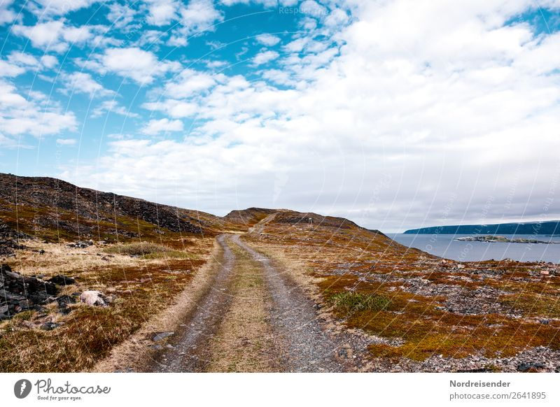 Straße ins Nirgendwo Ferien & Urlaub & Reisen Tourismus Abenteuer Ferne Freiheit Meer Insel Natur Landschaft Urelemente Wasser Himmel Wolken Schönes Wetter