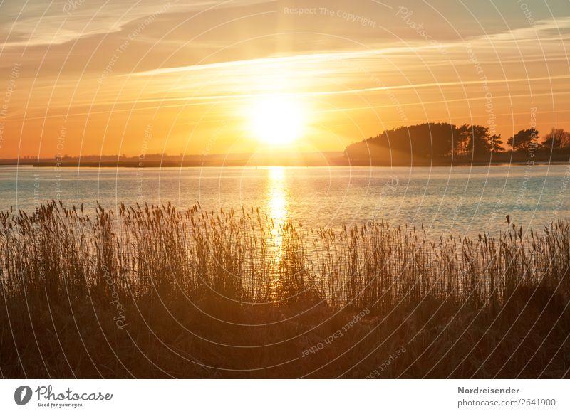 Sommerabend am Bodden Ferien & Urlaub & Reisen Tourismus Camping Sommerurlaub Sonne Meer Natur Landschaft Wasser Himmel Wolken Sonnenaufgang Sonnenuntergang