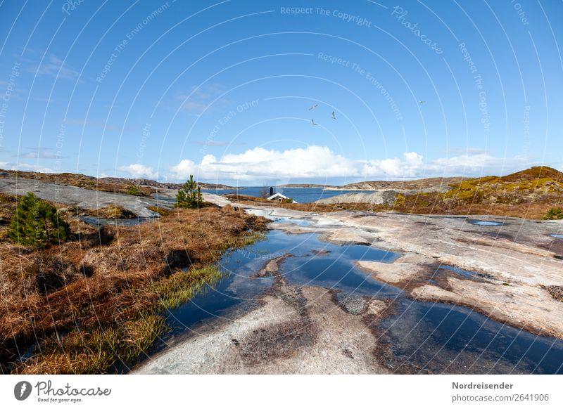 Wohnen in den Schären Ferien & Urlaub & Reisen Tourismus Sommer Sommerurlaub Strand Meer Insel Natur Landschaft Urelemente Wasser Schönes Wetter Gras Felsen
