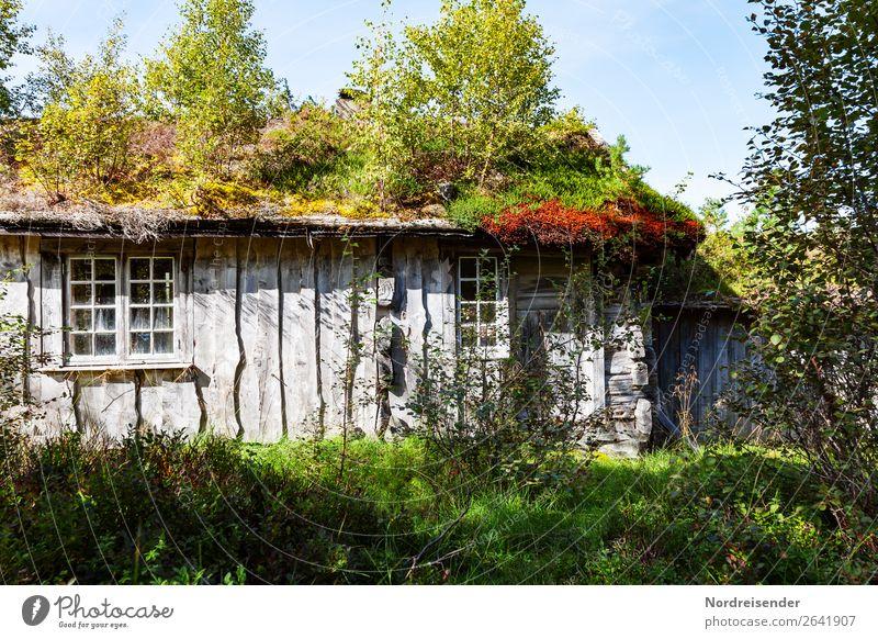 Komplex | Natürliches Wohnen Lifestyle harmonisch Wohnung Haus Traumhaus Garten Natur Schönes Wetter Baum Sträucher Wiese Wald Dorf Einfamilienhaus Bauwerk