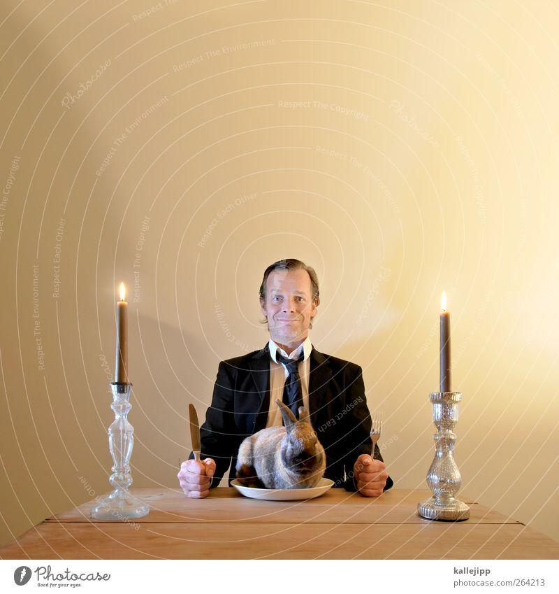 ich hab dich zum fressen gern Ostern Mensch maskulin Mann Erwachsene Kopf Haare & Frisuren 1 30-45 Jahre Bekleidung Anzug Krawatte Haustier Tier Essen