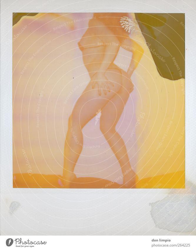 vintage boogie feminin Junge Frau Jugendliche Körper 1 Mensch 18-30 Jahre Erwachsene Bikini stehen schön Erotik trashig mehrfarbig Lust nackt Farbfoto Polaroid
