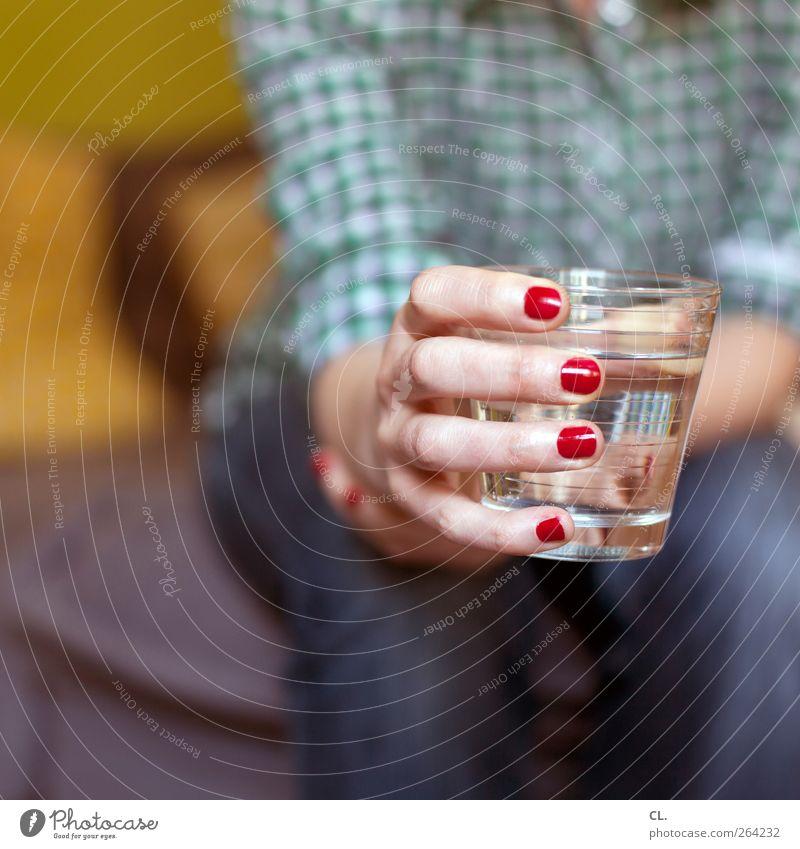 glas Mensch Frau Jugendliche Wasser Hand rot Junge Frau Erwachsene feminin 18-30 Jahre Gesundheit Arme sitzen Glas Trinkwasser frisch
