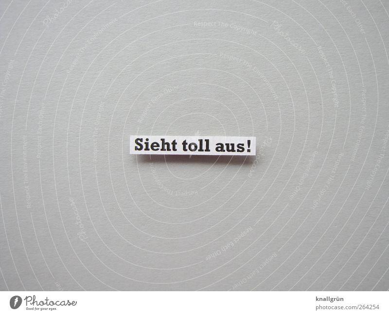 Ein Nachzügler für den Nordreisenden Schriftzeichen Schilder & Markierungen Kommunizieren eckig grau schwarz weiß Gefühle Glück Zufriedenheit Begeisterung