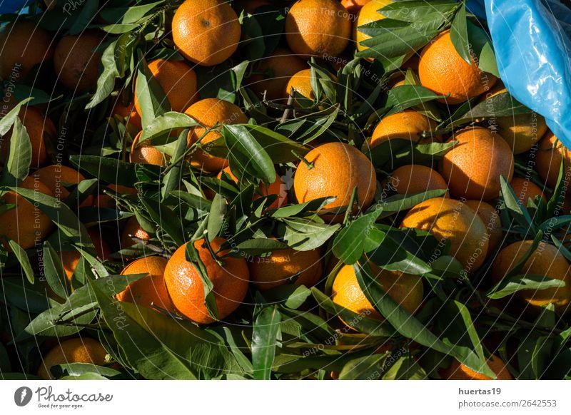 Frische Mandarinen in der Saison Lebensmittel Frucht Orange Vegetarische Ernährung Diät Saft Gesunde Ernährung frisch natürlich oben grün Zitrusfrüchte Entzug