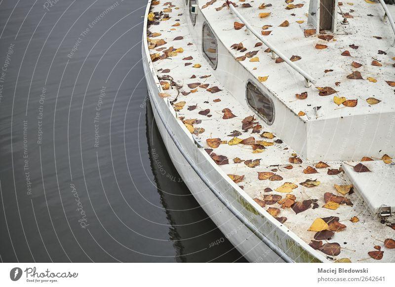 Alte Yacht mit herbstlichem Laub bedeckt. Ferien & Urlaub & Reisen Ausflug Kreuzfahrt Segeln Herbst Blatt Verkehr Jacht Segelboot Wasserfahrzeug alt Traurigkeit