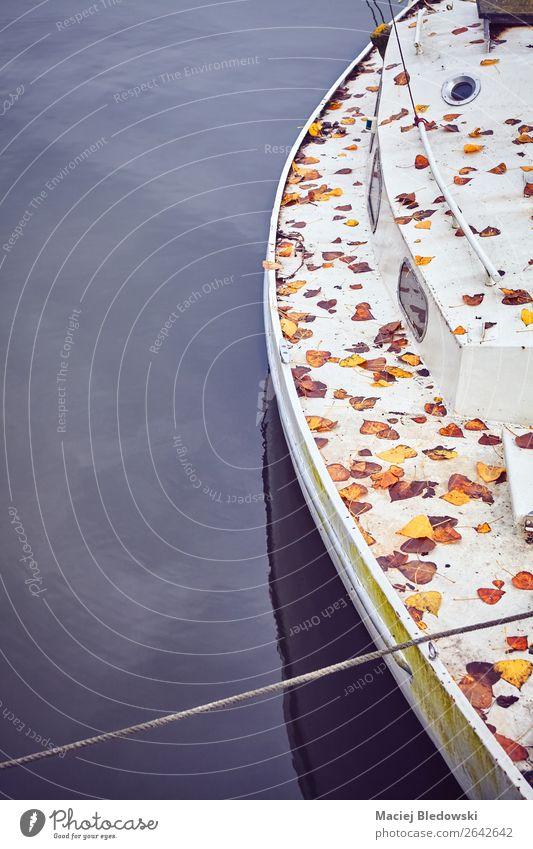 Ferien & Urlaub & Reisen alt Meer Blatt Ferne Strand Herbst Traurigkeit Küste Freiheit Ausflug Wellen Seeufer Flussufer Nostalgie Segeln
