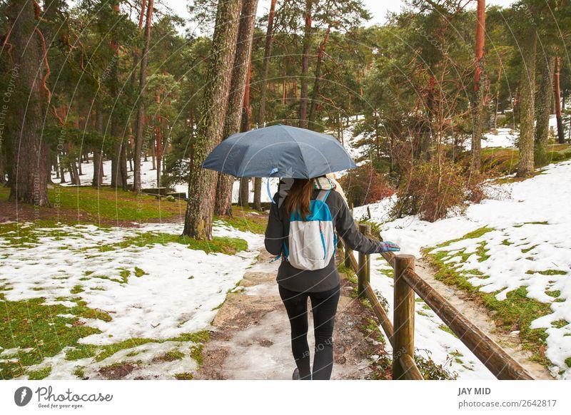 Mädchen, das mit einem Regenschirm in der Hand im Schnee spazieren geht, Rücken schön Winter wandern Mensch Frau Erwachsene Jugendliche Natur Wetter Schneefall