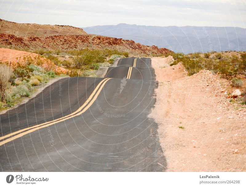 Unebenheiten der Straße Berge u. Gebirge Natur Landschaft Erde Sommer Klima Wärme Dürre Pflanze Hügel Wüste Verkehrswege Autobahn Bekanntheit natürlich rot
