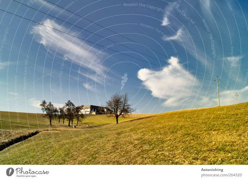 Bauernhof Umwelt Natur Landschaft Pflanze Erde Himmel Wolken Frühling Klima Wetter Schönes Wetter Wärme Baum Gras Grünpflanze Wiese Hügel Bach Haus Bauwerk