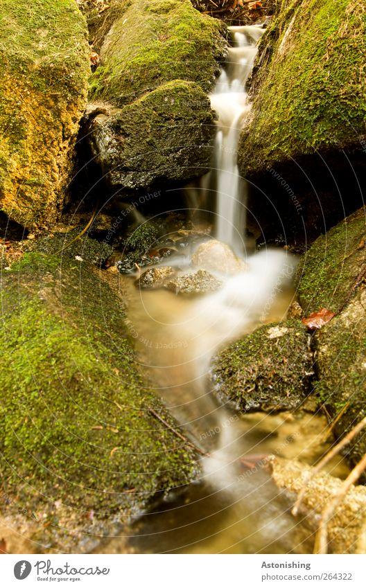 ein kleiner Wasserfall Natur weiß grün Pflanze Umwelt Frühling Sand Stein Erde Wetter Schönes Wetter rein Moos Bach