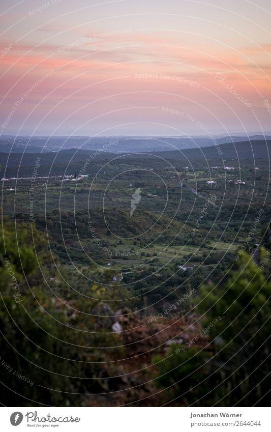 Far away Himmel Ferien & Urlaub & Reisen Natur Pflanze Landschaft Baum Ferne Berge u. Gebirge Wiese Tourismus Freiheit Ausflug Freizeit & Hobby wandern Feld