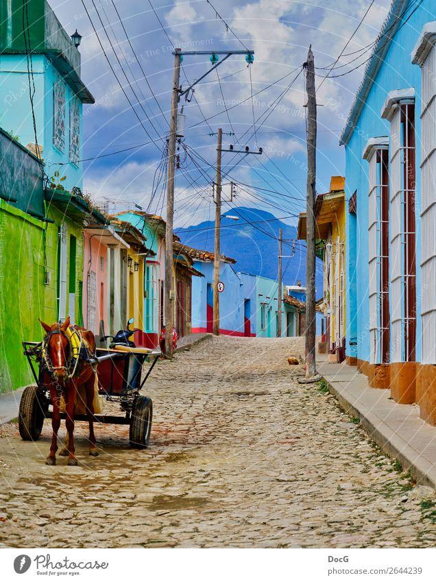Cuba - Street View w Donkey Cart Haus Himmel Unwetter Kuba Dorf Stadt Bauwerk Gebäude Architektur Fassade Verkehrsmittel Straße Pferdekutsche Nutztier fahren