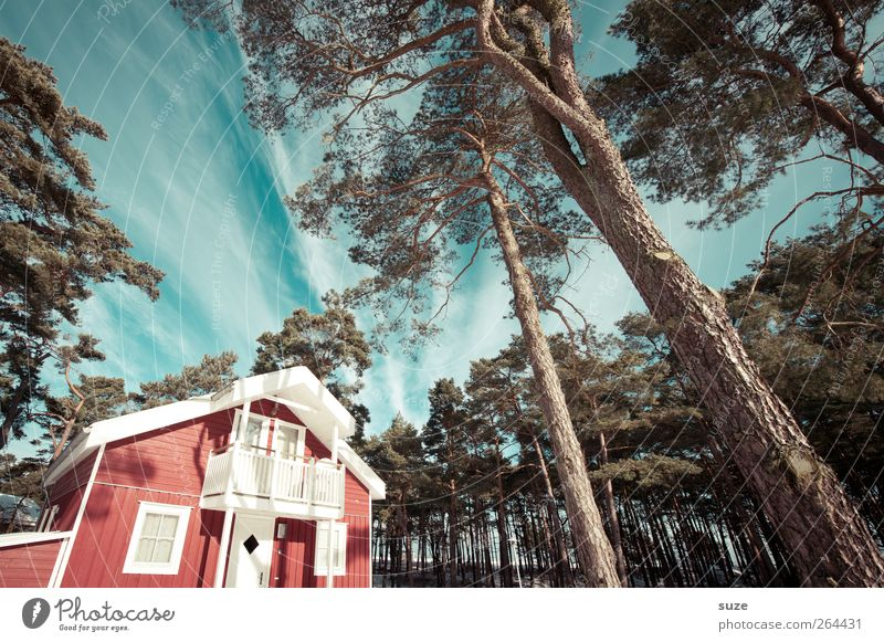 Ferienhaus Himmel Natur Baum rot Ferien & Urlaub & Reisen Wolken Haus Wald Umwelt Landschaft Fenster Holz Wohnung Fassade Klima natürlich