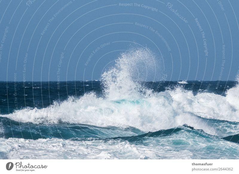 Meer, Wellen, Brandung, blauer Himmel Ferien & Urlaub & Reisen Tourismus Ausflug Abenteuer Ferne Freiheit Sommerurlaub Strand Natur Urelemente Luft Wasser
