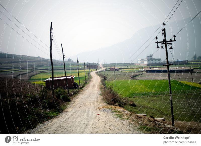Long path ahead. Himmel Sommer Landschaft Straße Frühling Reisefotografie Wege & Pfade Stimmung Feld Verkehrswege Strommast Landstraße Nepal