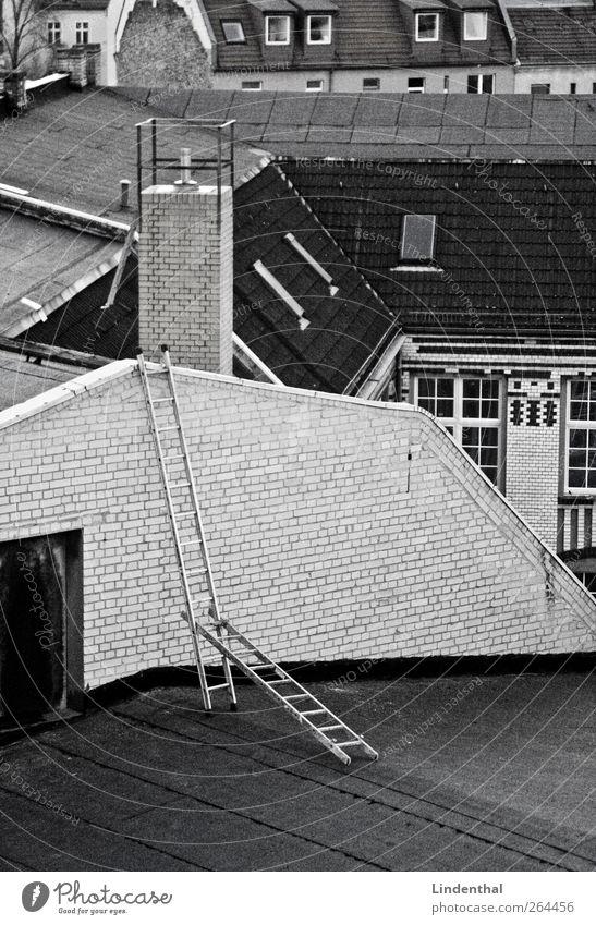 Räuberleiter auf Berliner Dächer Haus Wand oben Mauer außergewöhnlich Dach Leiter Konstruktion Schornstein erobern Schornsteinfeger