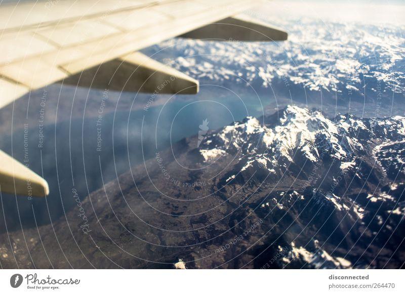 up in the air Landschaft Luft Erde Himmel Schnee Alpen Berge u. Gebirge Gipfel Schneebedeckte Gipfel Luftverkehr fliegen Farbfoto Luftaufnahme Tag