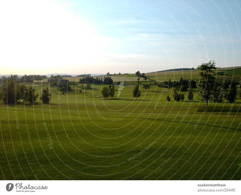 Golfcourse Landscape Natur grün Landschaft Golfplatz