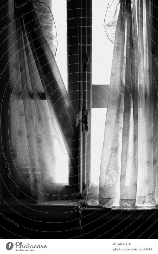 zerklüftete Fenstervorhänge Haus Küche Ruine Gebäude Architektur alt dreckig dunkel hell Stimmung Dekadenz Gardine fetzig Vorhang Licht Verwesung Verlassen