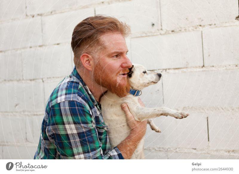 Mensch Hund Mann weiß Tier Freude Lifestyle Erwachsene Liebe Glück Junge klein Zusammensein braun Freundschaft Freizeit & Hobby