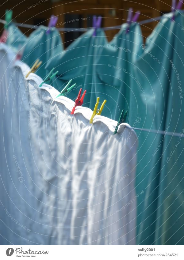 Frühjahrsputzwaschtag Wohnung Decke Wäscheklammern Wäscheleine hängen Reinigen nass Sauberkeit mehrfarbig weiß Waschtag Häusliches Leben aufhängen trocknen