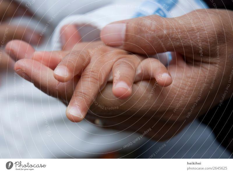 Mutter hält die Hand Ihrer Tochter Glück Haut Kind Baby Frau Erwachsene 2 Mensch 0-12 Monate 30-45 Jahre Zusammensein natürlich Gefühle Vertrauen Sicherheit
