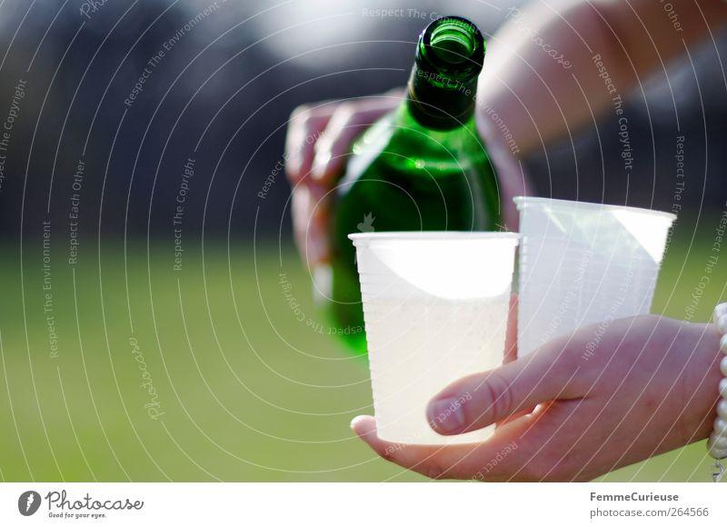 Cheers! Santé! Salute! Frau Hand grün Sommer Wiese Garten Freundschaft Park Freizeit & Hobby Junge Frau trinken Wein Sportrasen Dienstleistungsgewerbe Sommerurlaub Flasche