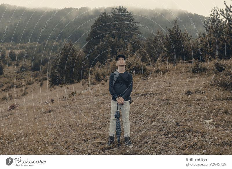 Aufschauend Mensch Ferien & Urlaub & Reisen Natur Jugendliche Einsamkeit Wald Berge u. Gebirge Lifestyle Herbst natürlich Wiese Stimmung Ausflug maskulin